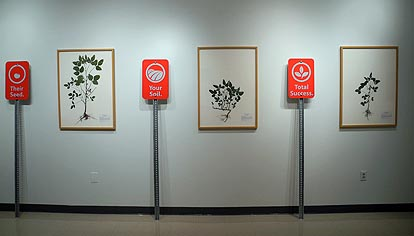 Installation view of exhibition in Arts West Gallery