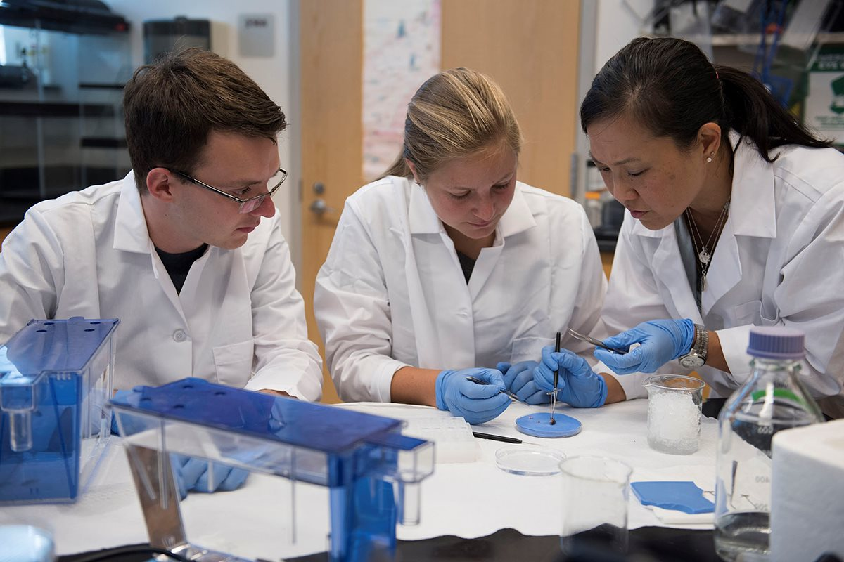 Associate Professor of Biology Jen Uno works with Lumen Scholar and biochemistry major Alex Ball '18 and Honors Fellow and biology major Emily Bell '18 in a laboratory.